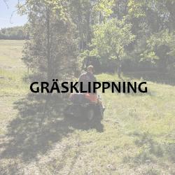 Bildlänk: Gräsklippning